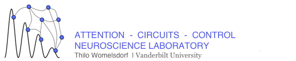 Attention Circuits Control Lab